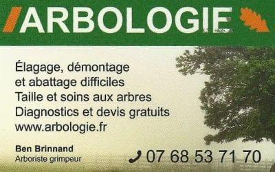 Arbologie