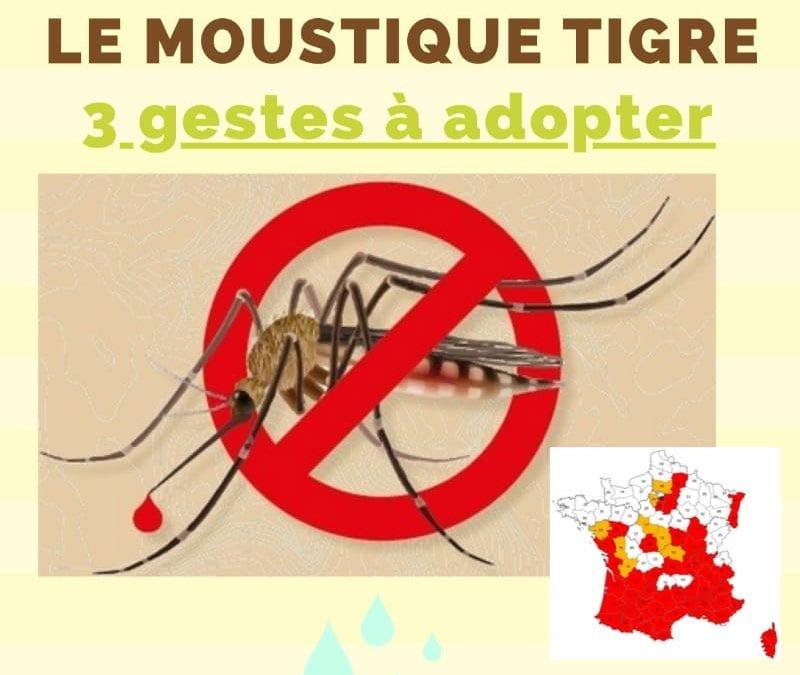 Le moustique Tigre